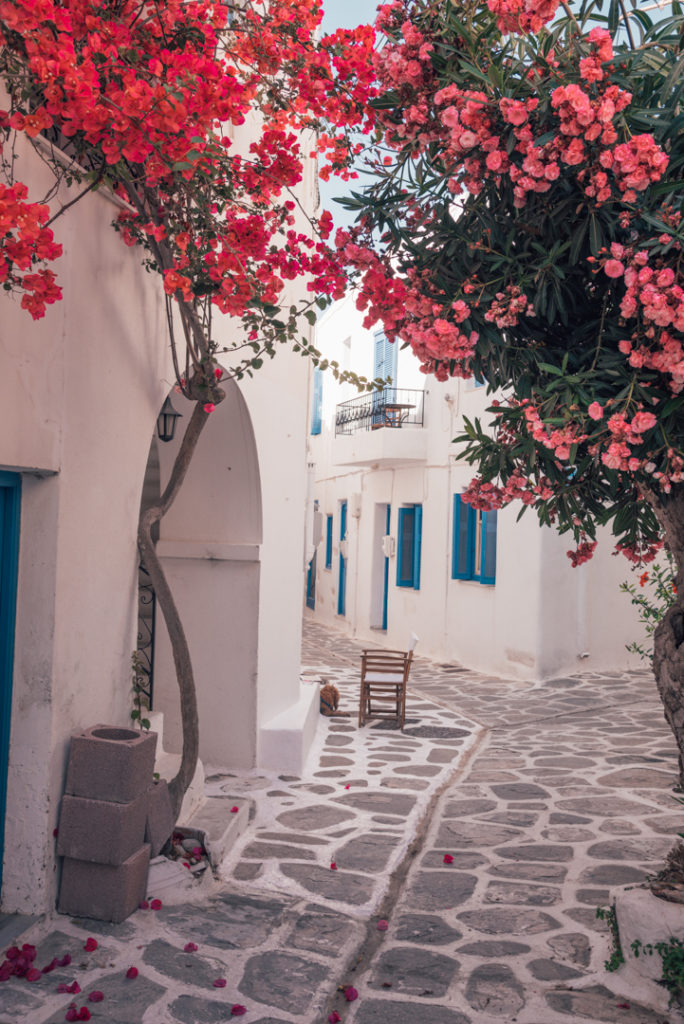 Street in Parikia Greece