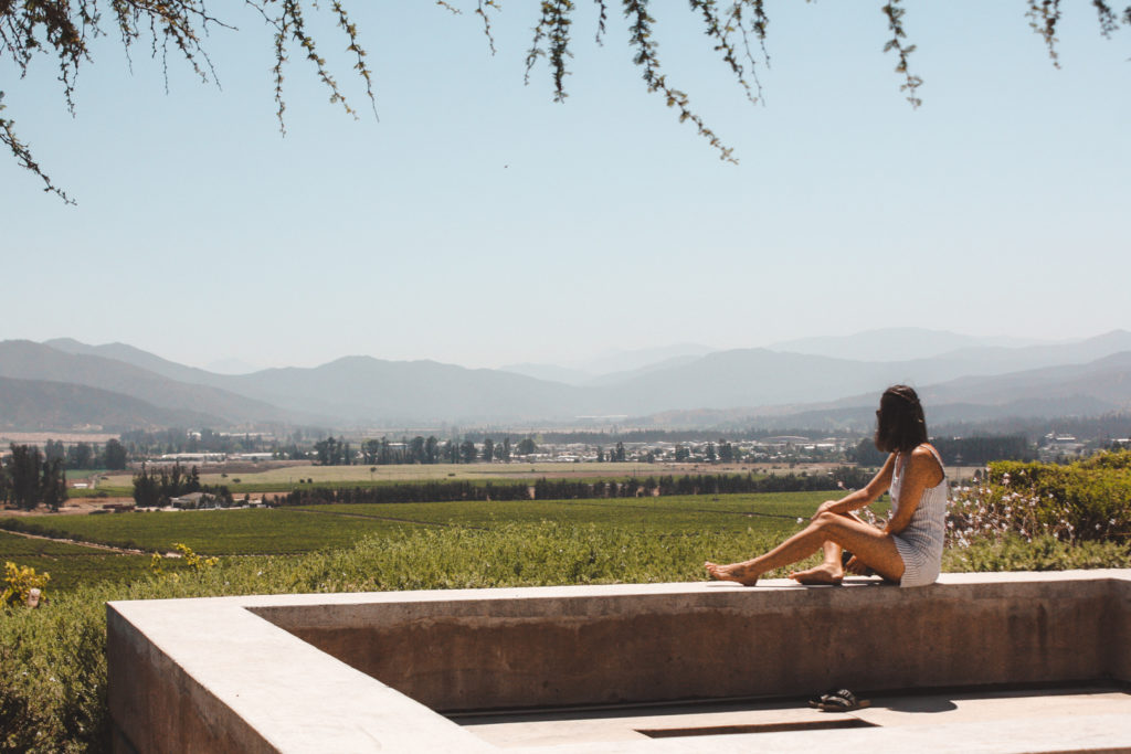 Casablanca Valley wineries- Casas del Bosque