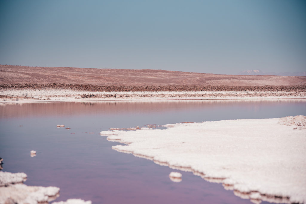 Lagunas Baltinache Chile