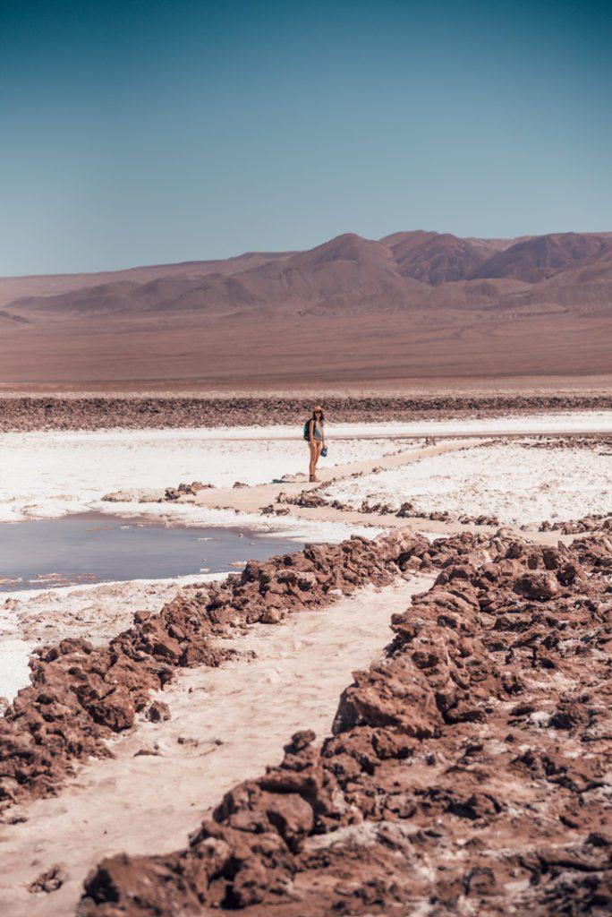Lagunas Baltinache, Atacama Desert Chile