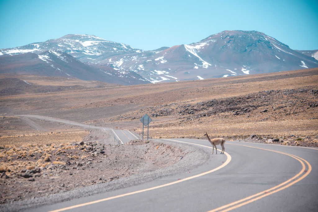Road in the Atacama Desert
