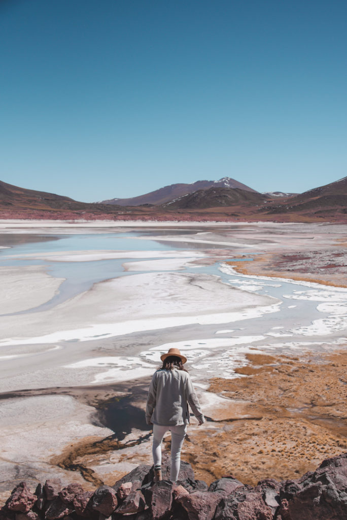 View of Salar de Talar Atacama Chile