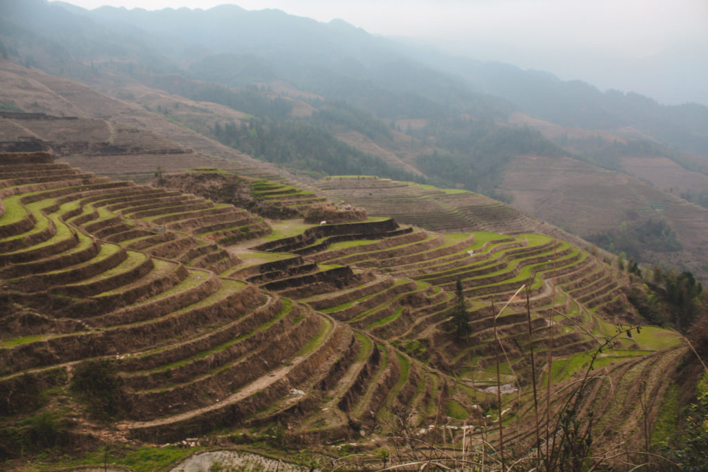 Longji rice terrace sout china