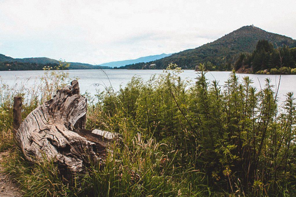 Seven Lakes Road Bariloche Argentina