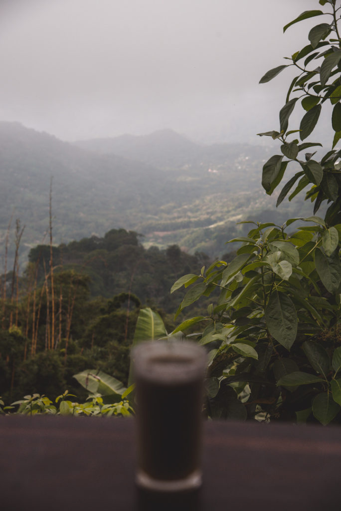 Juice above the jungle in Minca
