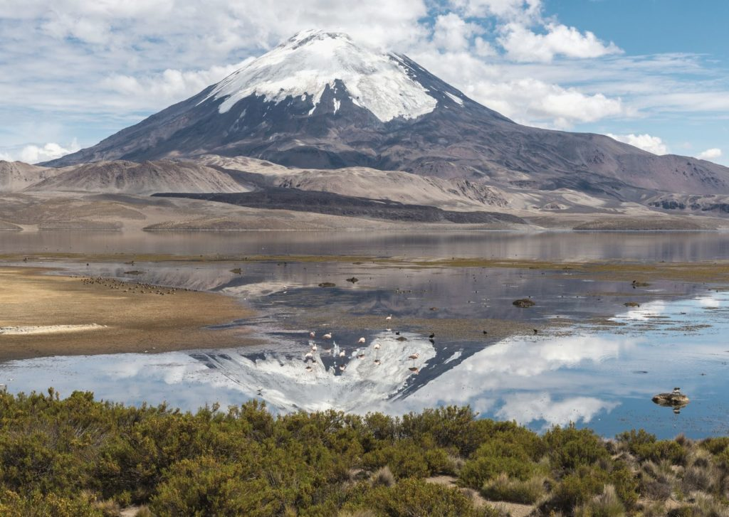 Lauca National Park, norther Chile