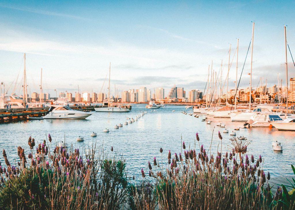 Marina in Uruguay, reasons to visit Uruguay