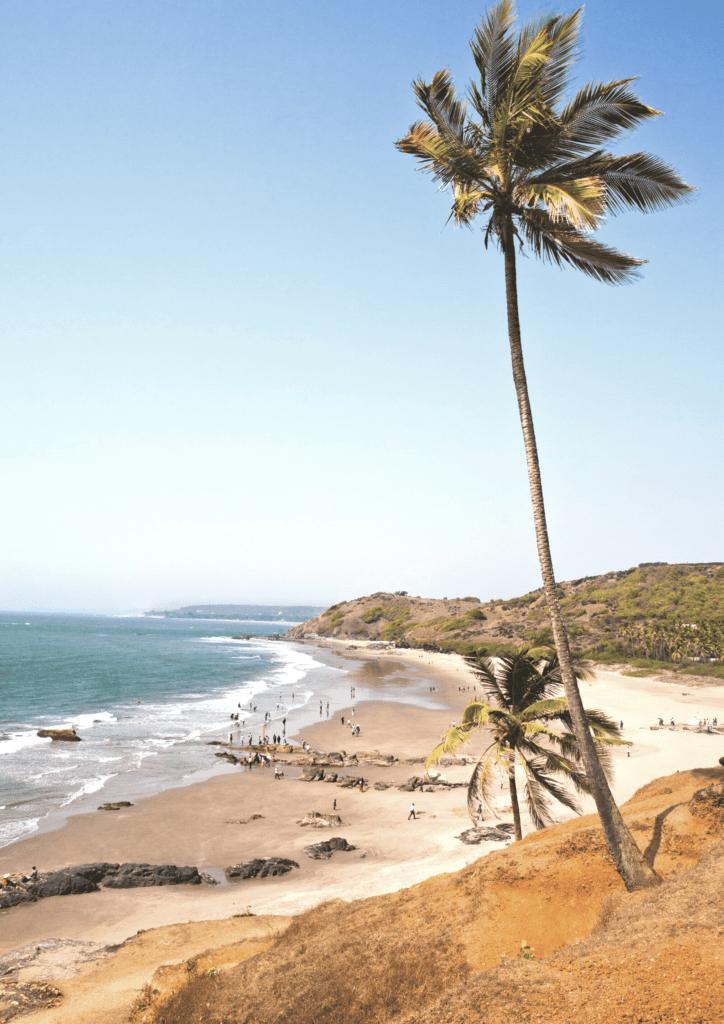 Goa- Best Global Wellness Destinations