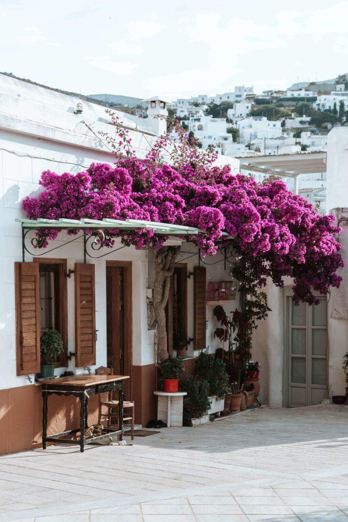 Beautiful restaurant in Lefkes, Greece