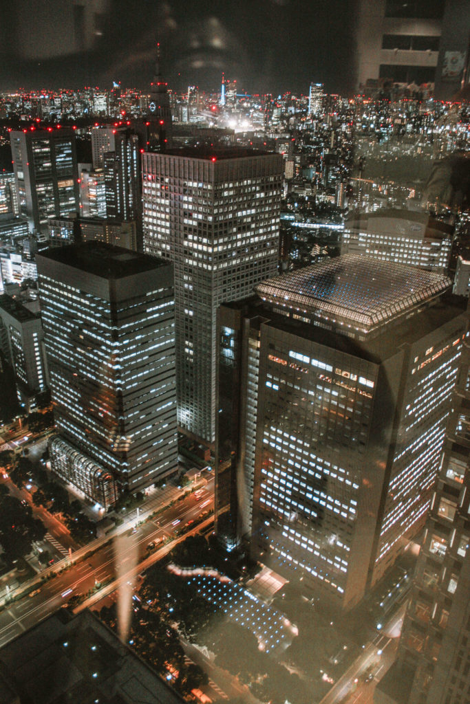 View from the Tokyo Metropolitan Governemnt building at night