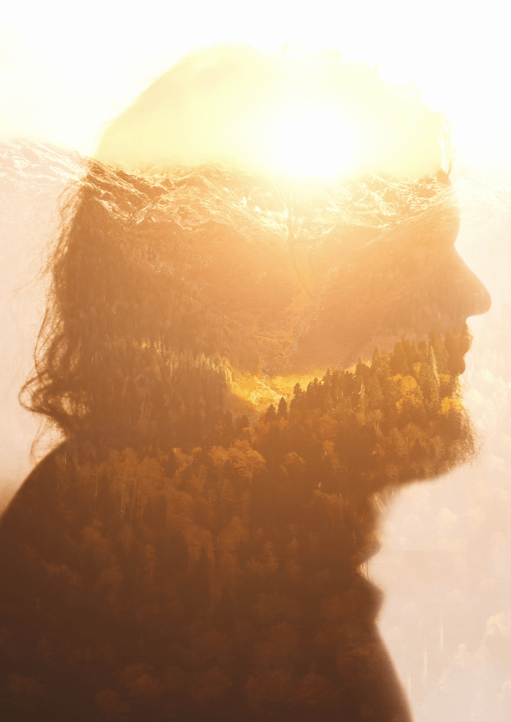 human head with landscape at sunset