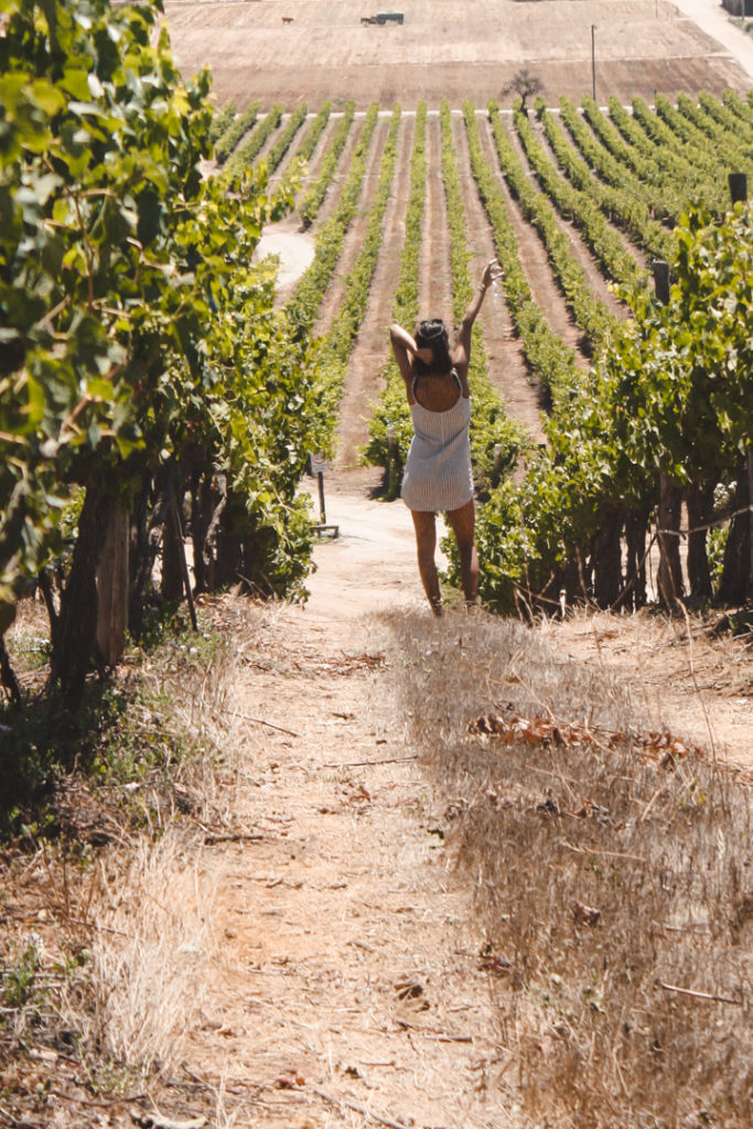 Woman in a vineyard among the vines