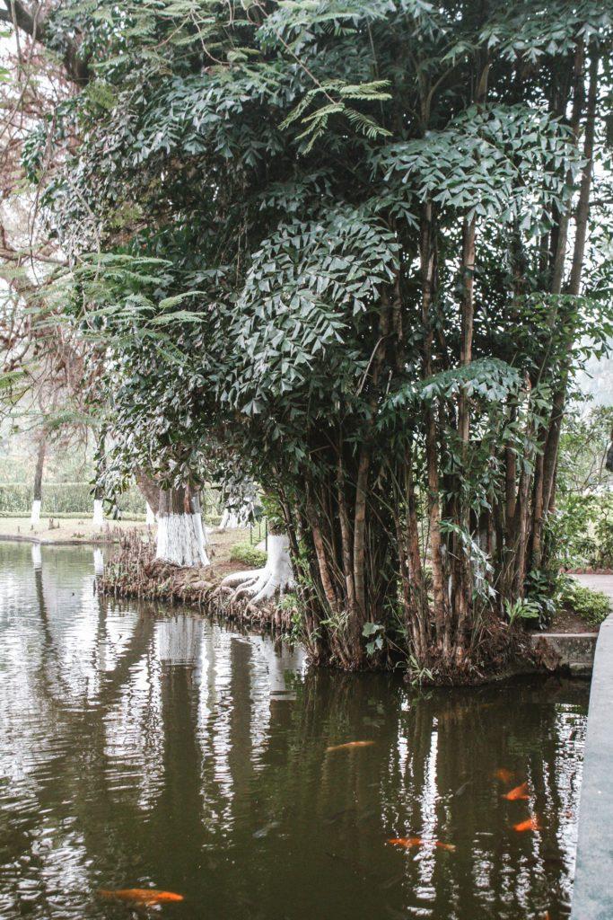 Hanoi itinerary 4 days- pond
