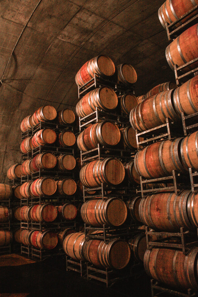 Wine barrels in a vineyard best cities to visit in south america