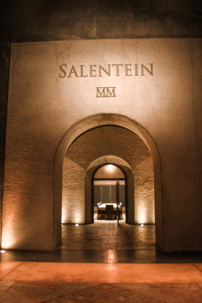 Salentein Vineyard in Uco Valley - best cities to visit in south america