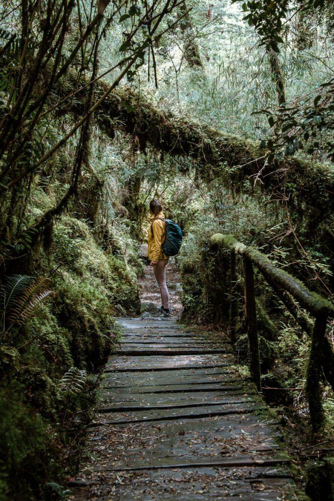 Queulat National Park Carretera Austral
