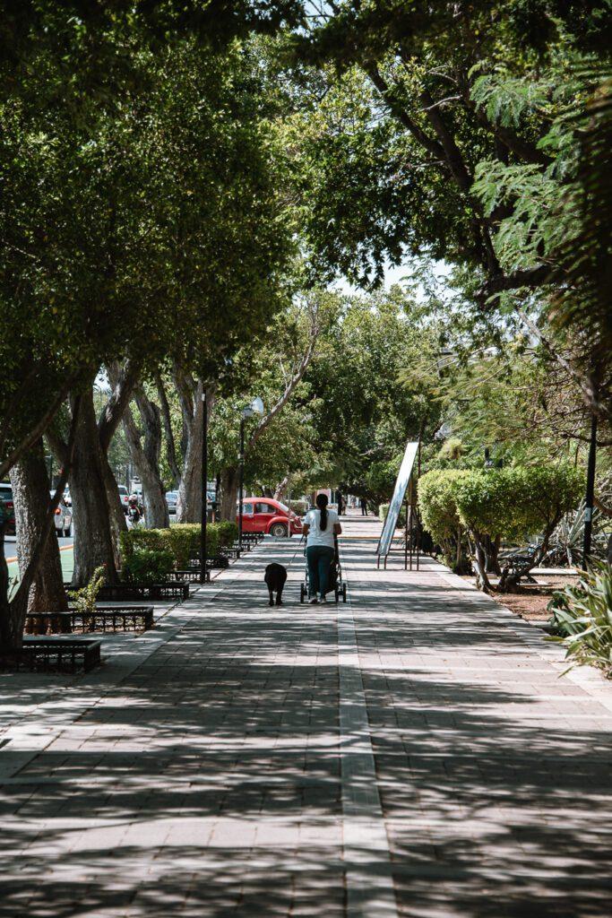 Paseo Montejo, Merida, Mexico