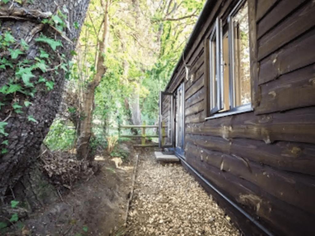 new forest log cabin rental