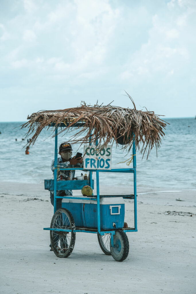 Cold coconut cart in Holbox
