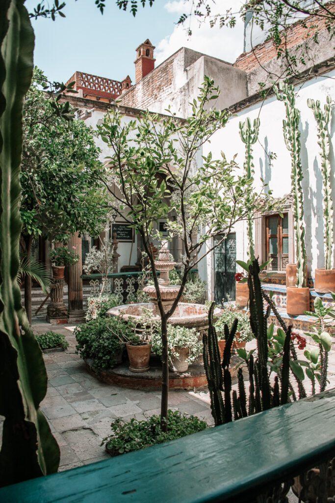 Courtyard garden in San Miguel de Allende