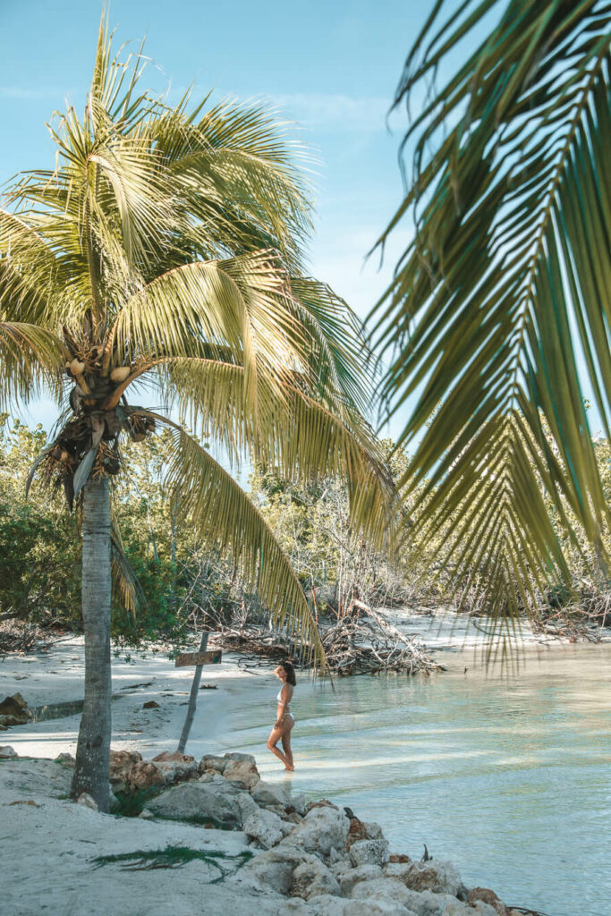 things to do in Holbox beach