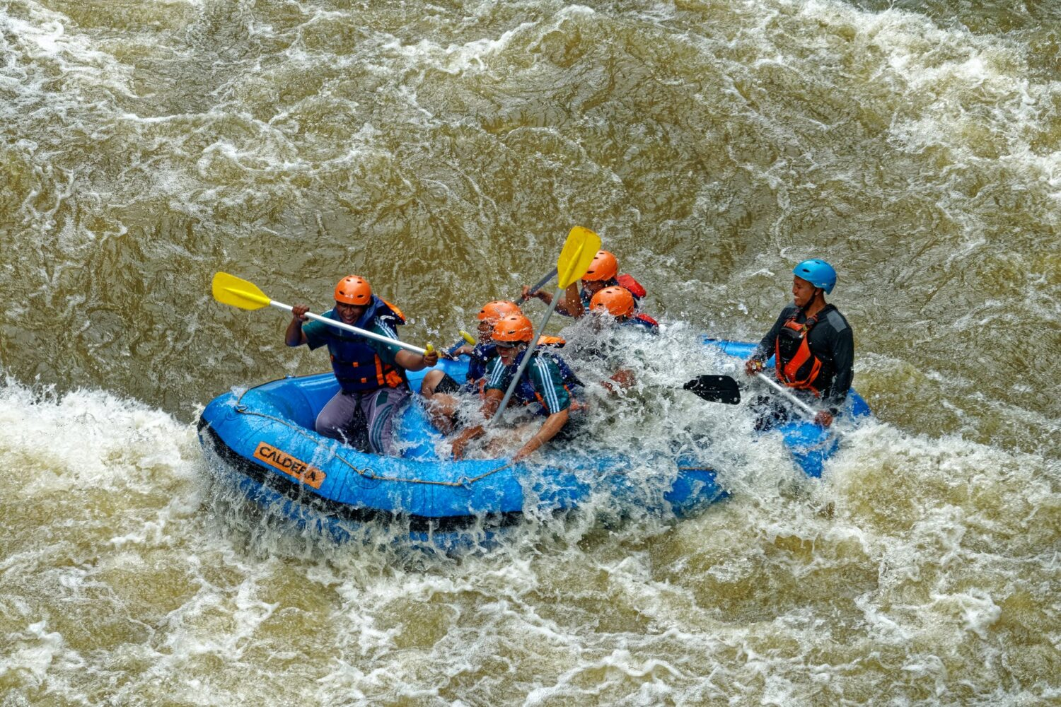 group of men paddling while inside inflatable boat